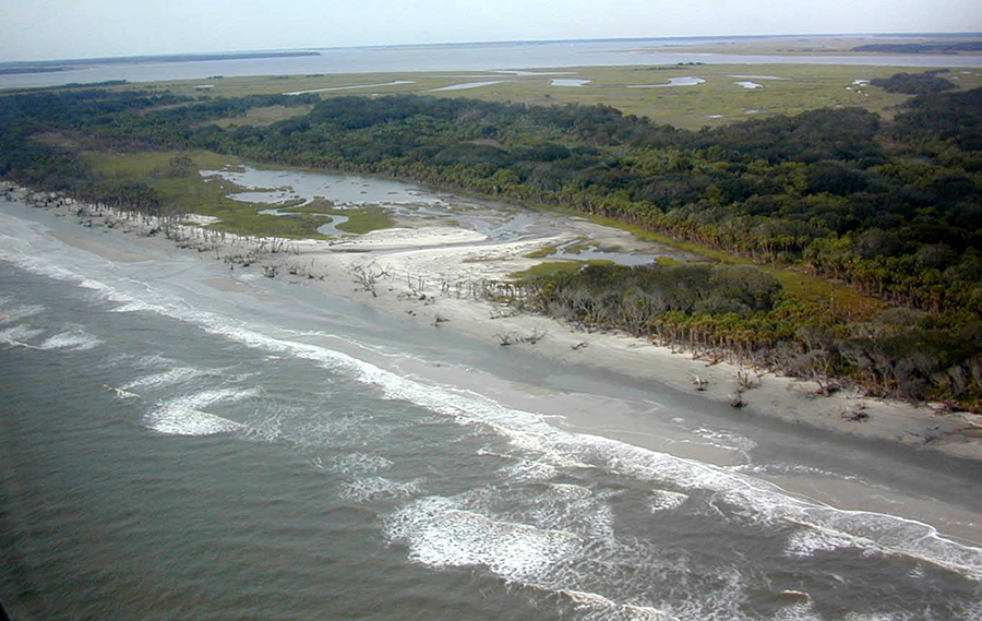 "Flag Pond on South Beach, St. Catherines Island, Georgia was breached on March 12, 1993 in the ""Storm of the Century"" and inundated by the Atlantic Ocean, changing it from a freshwater pond to a coastal lagoon literally overnight. Relict marsh mud underlies this beach and an extensive tree"
